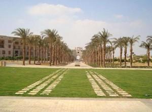 American University Cairo