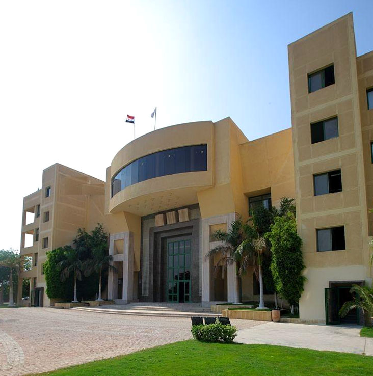 Misr International University Admission