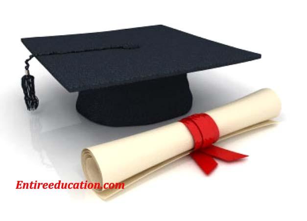University of Punjab Results