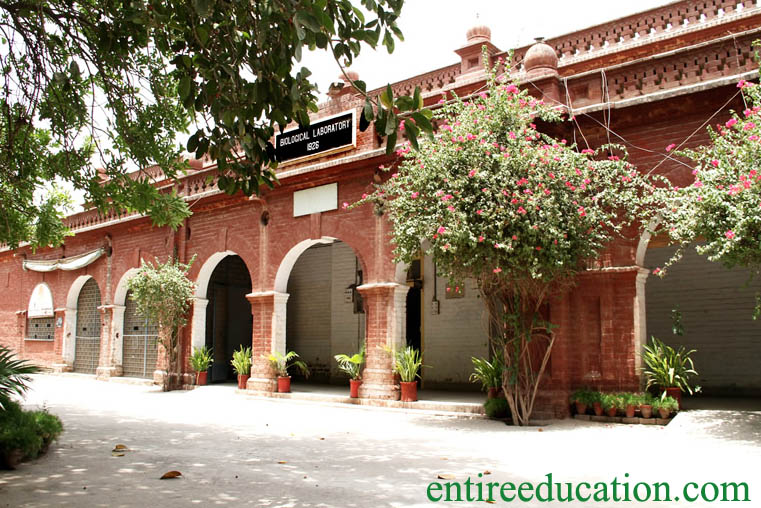 The Women University Multan Admission 2020 Last Date