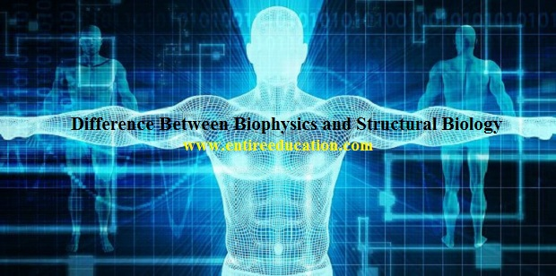 What's Difference Between Biophysics and Structural Biology?