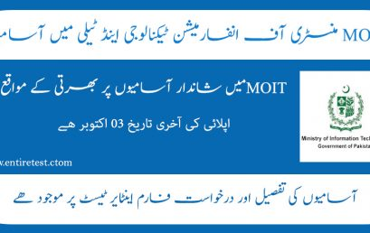 Ministry of Information Technology and Telecommunications Jobs 2021